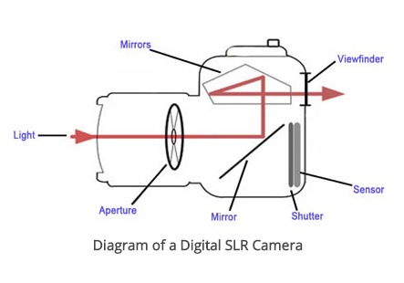 DSLR vs Mirrorless Cameras this is a Cross section of DSLR camera showing how the mirror works