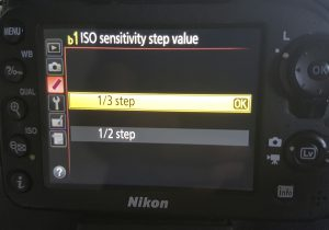 The menu option in modern DSLRs showing the ISO sensitivity step increments