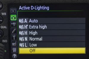 Active D lighting is one way to correctly expose for high contrast lighting. The settings can be found in the menus as pictured here