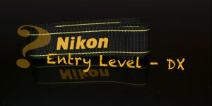 The Best Nikon Entry Level Cameras