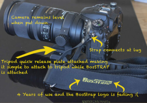 BosSTRAP attached to Nikon camera with details of the BosSTRAP's unique features