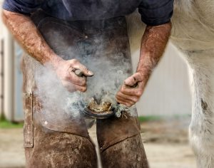 Action Shot of a Farrier fitting a shoe on a horse with the smoke billowing off the hot shoe and hoof