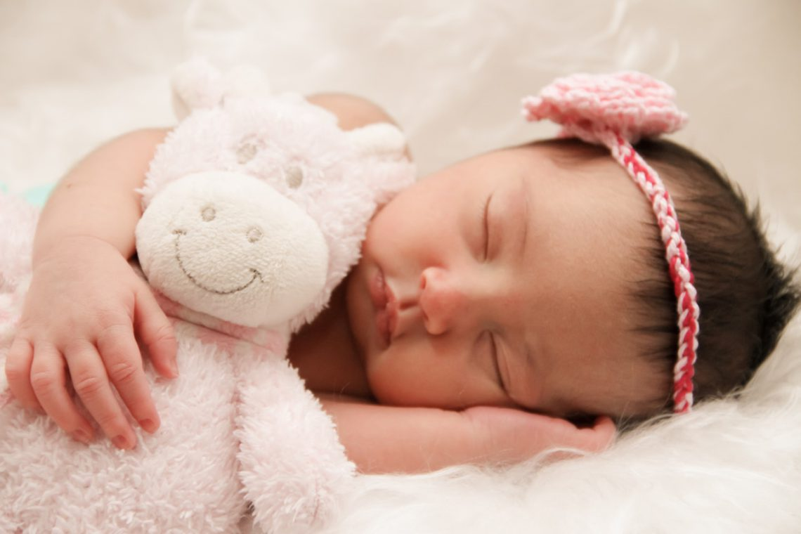 Photo of a gorgeous Newborn girl with a stuffed pink sheep photo prop and a cute red headband with pink florette