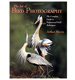 Best Photography Books The Art Of Bird Photography