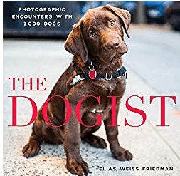 Best Photography Books The Dogist