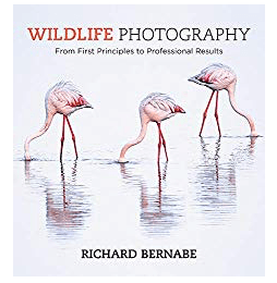 Best Photography Books wildlife Photography From First Principles To Professional Results