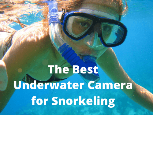 The Best Underwater Camera for Snorkeling