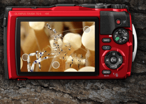 Best Point And Shoot Camera TheRear screen of the Olympus Tough TG 6